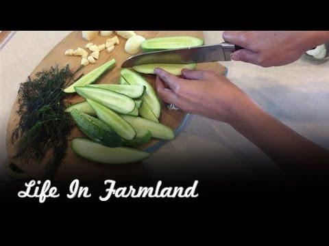 Our Favorite Pickle Recipe - Claussen Clone Refrigerator Pickles