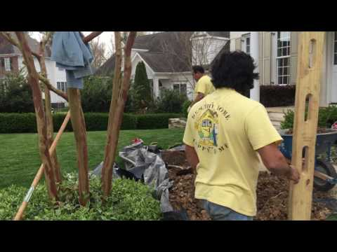 How To Yard Drainage by Lindsley Waterproofing