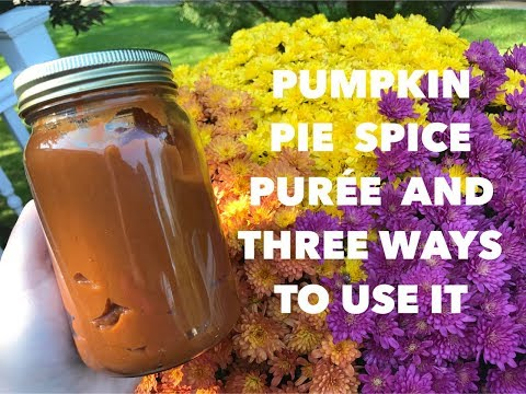 Fit and Fab Fall Collab: Pumpkin Pie Spice Puree and 3 Ways to Use It