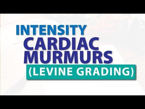 Intensity of Heart Murmurs - Levine Grading