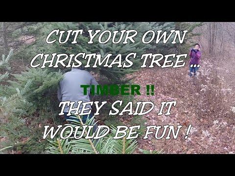 Cut Your Own Christmas Tree !?!?