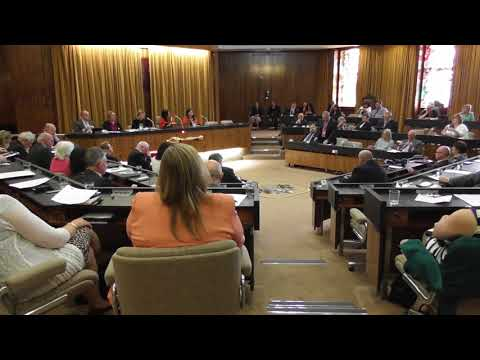 Gateshead Council 18 May 2018 - Cllr Jonathan Wallace 2nds mayoral vote of thanks