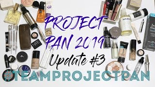 Project Pan 2019   Update #3
