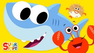 Download Open Shut Them #3   featuring Baby Shark   Super Simple Songs Video