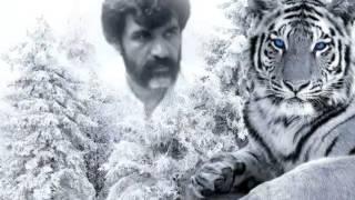 سردار شهید تاج محمد خان گمشادزهی