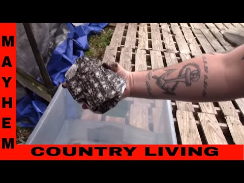 How to do Hydro-graphic dipping/painting part 2 of 3. With Cody.