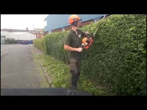 Commercial Hedge Trimming Sheffield
