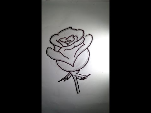 how to draw a rose (easy)