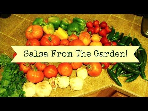 Best Salsa Recipe Ever! | Garden Veggie Salsa