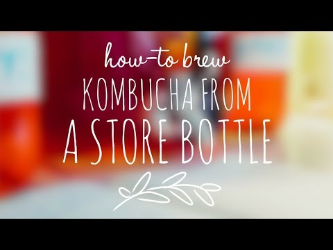 How-to: Brew your own KOMBUCHA!