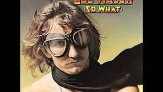Joe Walsh   Falling Down with Lyrics in Description