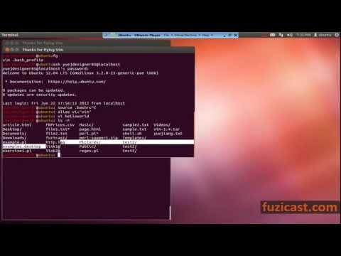 UNIX-1.10 Customize Command Prompt (Video Tutorial)