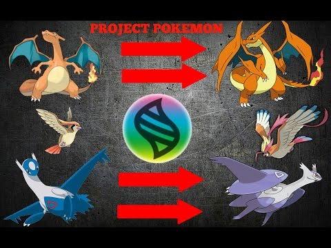 PROJECT POKEMON NEW LEGENDARY MEGA EVOLUTIONS!!!!! EASY MEGA STONE!!!! (Project Pokemon Roblox)