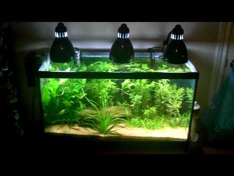 Clip on lamp aquarium lighting
