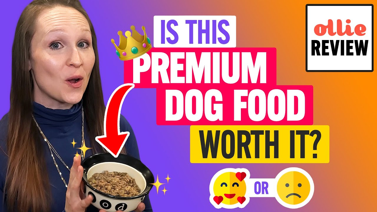 🐶 Ollie Review:  Are These Nutritionally-Balanced Fresh & Clean Dog Food Packs Worth It?