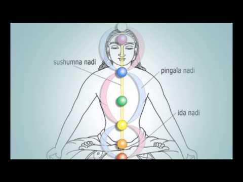 Kundalini & The Orgasm