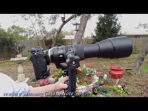 Мощная комбинация -  Sony a7R III + Tamron SP 150-600mm G2 объектив в 4К