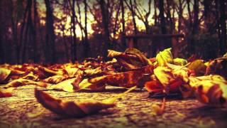 Exist Strategy - Autumn Breeze