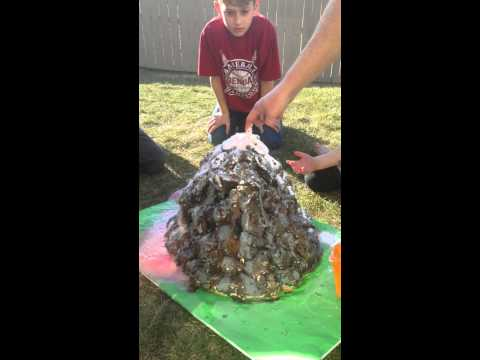 Vinegar and baking soda volcano