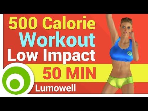 500 Calorie Workout Low Impact