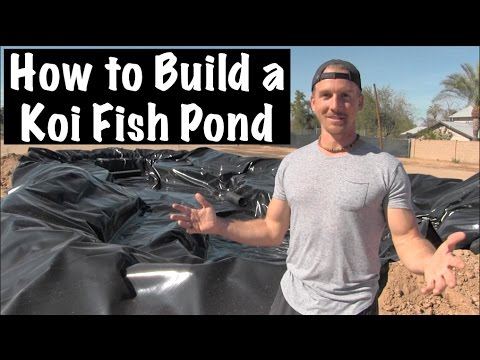 How to Build a BACKYARD Koi Fish POND, Part 2 - Amazing!!!