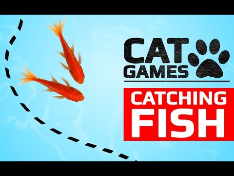 Cat Games Catching Fish Videos For Cats To Watch