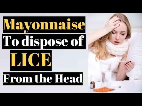 Mayonnaise to dispose of LICE from the Head