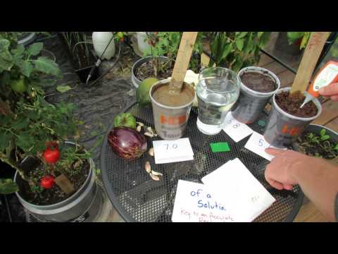 What is Vegetable Garden Soil pH and How to Use a Digital pH Meter - The Rusted Garden 2013