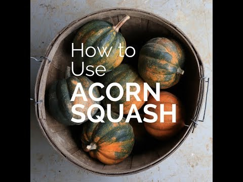 How to Use, Prep, and Store Acorn Squash (with recipe)
