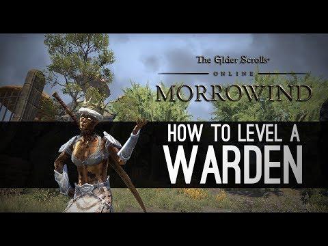 How to level a Warden for Morrowind - Elder Scrolls Online ESO
