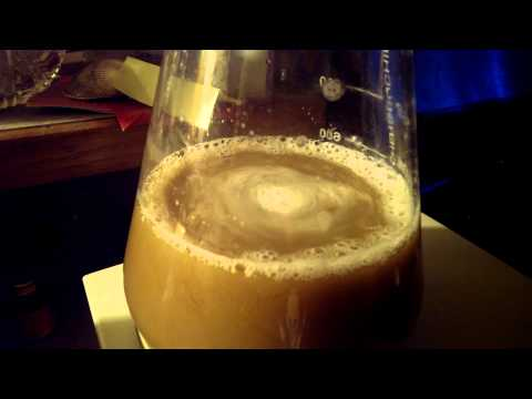 Test run, yeast starter for beer brewing