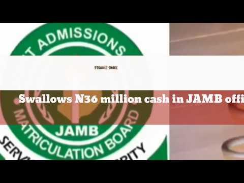 Strange snake swallows N36 million cash in JAMB office