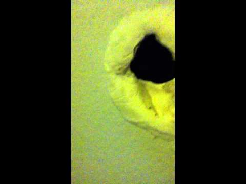 dum girl punches the wall and makes a hole