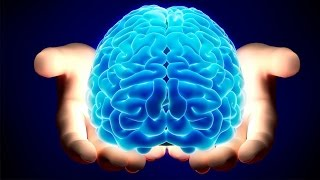The Most Amazing Facts About The Human Brain