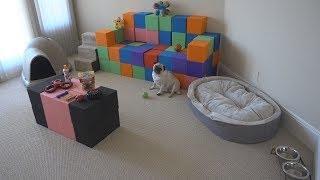 SURPRISING MY DOG WITH HIS DREAM HOUSE!! (INSANE) | FaZe Rug