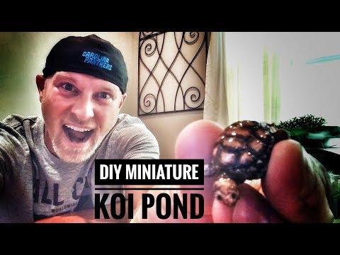 How To Make a Miniature Koi Pond - OurHouse DIY