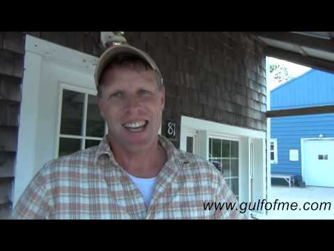 Seafood Including Lobster at Gulf Of Maine Buy Local, Sell Local,Get Local