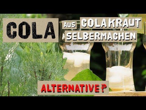 Cola aus Colakraut selber machen - Alternative zu Cola?