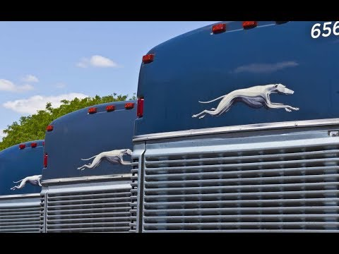 Is the GREYHOUND BUS Just for POOR PEOPLE?