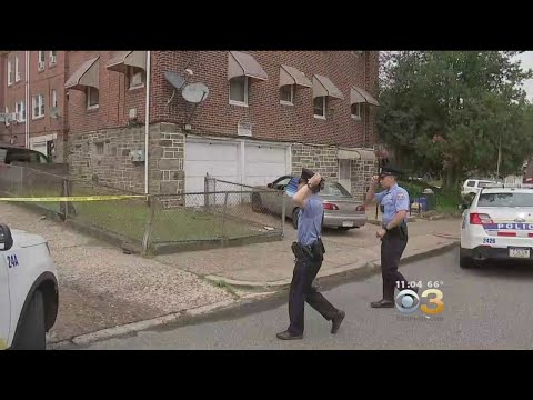 Police: Family Dog Shot, Killed After Attacking 4-Year-Old Boy In Philadelphia
