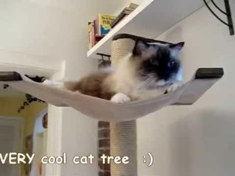 Scandicat Wall Mounted Cat Tree