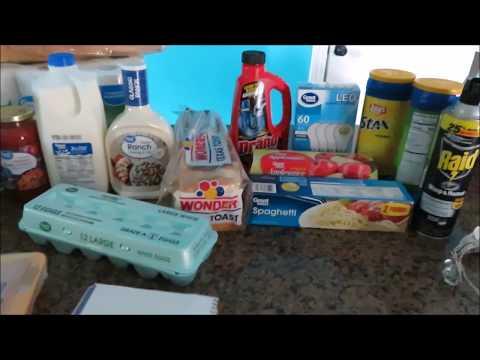 Walmart Grocery Haul | May 27th