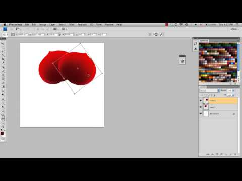 Tip: Drawing a Rose in Photoshop