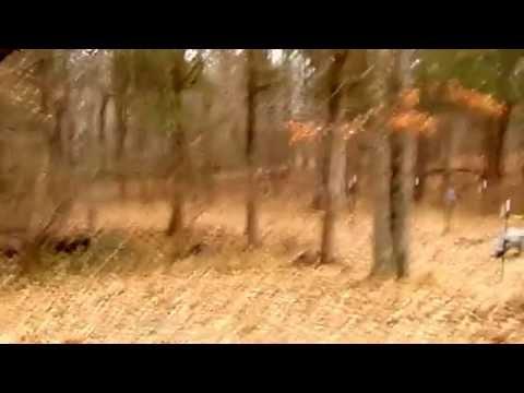 Go Pro Bow Mount Test: Deer Shot