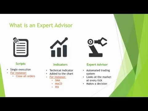Build a Naked Trading Forex Robot - Lecture 3 - MetaTrader and MetaEditor