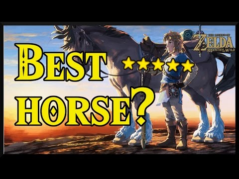 [Zelda Breath of the Wild] Where to find the BEST HORSES