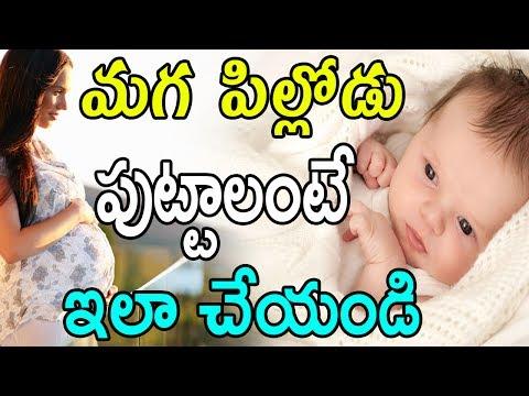 మగ పిల్లోడు పుట్టాలంటే ఇలా చేయండి |  Tips To Conceive A Baby Boy | GARAM CHAI