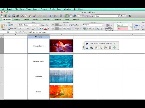 Insert Pictures in Excel Automatically Sized to Fit Cells (Mac & Windows)