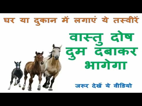 vastu images pictures for home house in hindi   vastu shastra tips home  running horse picture vastu