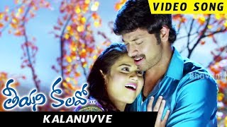 Teeyani Kalavo Movie Songs - Kalanuuve Full Video Song - Sri Tej,Akhil Karteek,Hudasa